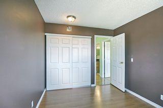 Photo 24: 80 Aberfoyle Close NE in Calgary: Abbeydale Detached for sale : MLS®# A1137613