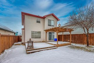 Photo 30: 14716 Mt Mckenzie Drive SE in Calgary: McKenzie Lake Detached for sale : MLS®# A1054201