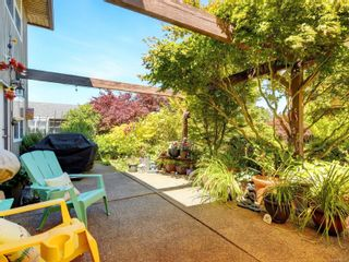 Photo 18: 6555 Country Rd in : Sk Sooke Vill Core House for sale (Sooke)  : MLS®# 884084