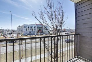 Photo 22: 215 7210 80 Avenue NE in Calgary: Saddle Ridge Apartment for sale : MLS®# A1091258