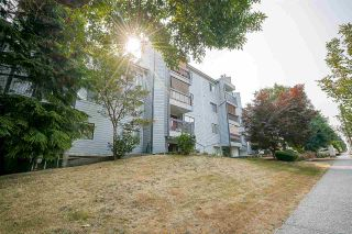 """Photo 2: 213 10530 154 Street in Surrey: Guildford Condo for sale in """"Creekside"""" (North Surrey)  : MLS®# R2205122"""