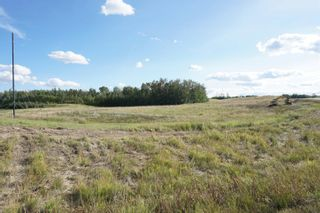 Photo 13: 17 53214 RR13: Rural Parkland County Rural Land/Vacant Lot for sale : MLS®# E4266457