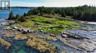 Photo 11: Lot Maiden Hair Island in Lahave Islands: Vacant Land for sale : MLS®# 202114713