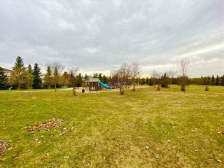 Photo 44: 320 CARMICHAEL Wynd in Edmonton: Zone 14 House for sale : MLS®# E4229199