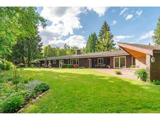 Photo 9: 4848 246A Street in Langley: Salmon River House for sale : MLS®# R2530745