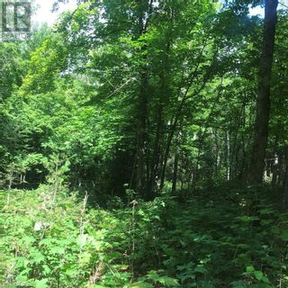 Photo 32: 0 OTTAWA Avenue in South River: Vacant Land for sale : MLS®# 40156406