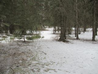 Photo 49: 371009 Range Road 5-3: Rural Clearwater County Detached for sale : MLS®# A1062405