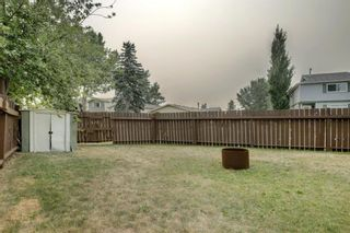 Photo 29: 92 Erin Croft Crescent SE in Calgary: Erin Woods Detached for sale : MLS®# A1136263