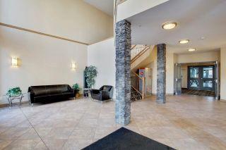 Photo 29: 448 10121 80 Avenue in Edmonton: Zone 17 Condo for sale : MLS®# E4264362