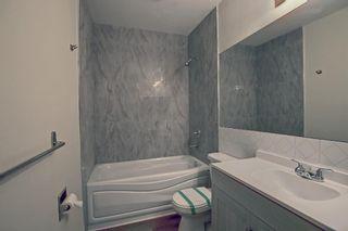 Photo 6: 3036 Doverville Crescent SE in Calgary: Dover Semi Detached for sale : MLS®# A1148570