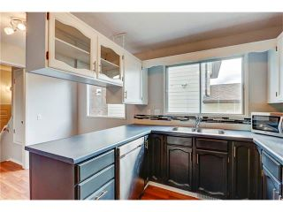 Photo 17: 6120 84 Street NW in Calgary: Silver Springs House for sale : MLS®# C4049555
