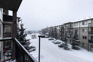 Photo 30: 304 1188 HYNDMAN Road in Edmonton: Zone 35 Condo for sale : MLS®# E4248234