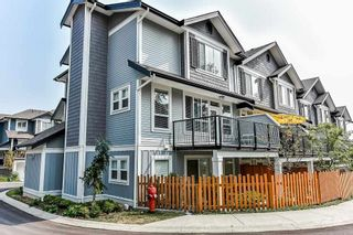 """Photo 20: 22 7157 210 Street in Langley: Willoughby Heights Townhouse for sale in """"Alder at Milner Height"""" : MLS®# R2314405"""