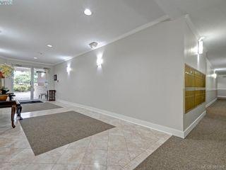 Photo 18: 203 1501 Richmond Ave in VICTORIA: Vi Jubilee Condo for sale (Victoria)  : MLS®# 765592