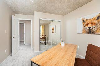 Photo 35: 215 279 SUDER GREENS Drive in Edmonton: Zone 58 Condo for sale : MLS®# E4261429
