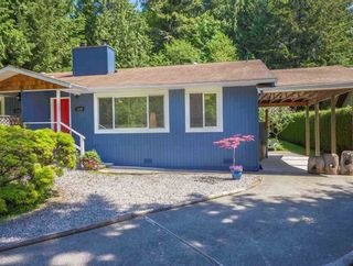 Photo 15: 1038 STEPHENS Road: Roberts Creek House for sale (Sunshine Coast)  : MLS®# R2554256