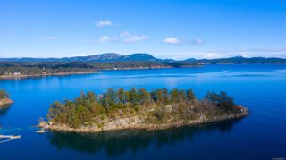 Photo 11: 2nd Sister Second Sister Island in : GI Salt Spring Land for sale (Gulf Islands)  : MLS®# 860128