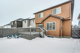 Photo 34: 325 Saddlecrest Way NE in Calgary: Saddle Ridge House  : MLS®# C4149874
