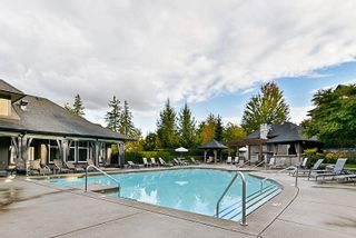 """Photo 20: 74 15175 62A Avenue in Surrey: Sullivan Station Townhouse for sale in """"Brooklands"""" : MLS®# R2207663"""