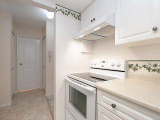 Photo 10: 303 1021 Collinson St in : Vi Fairfield West Condo for sale (Victoria)  : MLS®# 853542