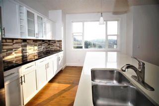 Photo 15: 209 Royal Elm Road NW in Calgary: Royal Oak Detached for sale : MLS®# A1107176