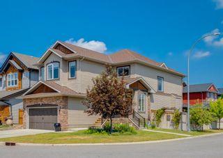 Photo 43: 69 Silverado Skies Crescent SW in Calgary: Silverado Detached for sale : MLS®# A1127831