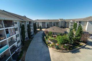 Photo 28: 519 261 YOUVILLE Drive E in Edmonton: Zone 29 Condo for sale : MLS®# E4252501