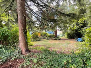 """Photo 16: 665 CHAPMAN Avenue in Coquitlam: Coquitlam West House for sale in """"Coquitlam West"""" : MLS®# R2617442"""