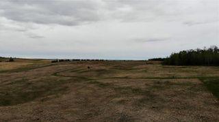 Photo 8: Viewmar Drive: Rural Ponoka County Land for sale : MLS®# C4288523