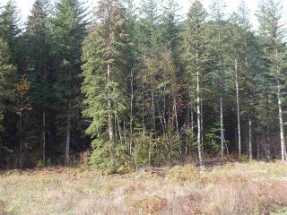 Photo 8: 65457 NORTON Road in Hope: Hope Center Land for sale : MLS®# R2545693