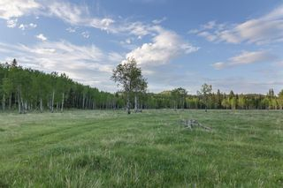 Photo 29: 231175 Bracken Road in Rural Rocky View County: Rural Rocky View MD Land for sale : MLS®# A1116621