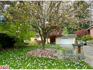 Photo 1: 11113 BOND Boulevard in Delta: Sunshine Hills Woods House for sale (N. Delta)  : MLS®# F1211153