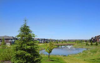 Photo 39: 404 1004 ROSENTHAL Boulevard in Edmonton: Zone 58 Condo for sale : MLS®# E4250933