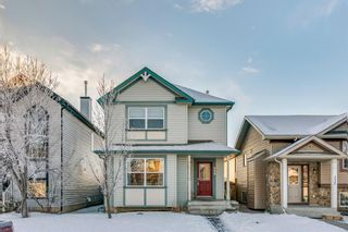 Photo 40: 239 Evermeadow Avenue SW in Calgary: Evergreen Detached for sale : MLS®# A1062008