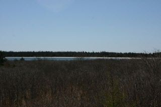Photo 4: West Sable Road in Little Harbour: 407-Shelburne County Vacant Land for sale (South Shore)  : MLS®# 201911281