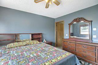 Photo 16: 120 Costa Mesa Close NE in Calgary: Monterey Park Detached for sale : MLS®# A1137993