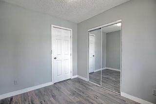 Photo 26: 455 Falconridge Crescent NE in Calgary: Falconridge Detached for sale : MLS®# A1103477