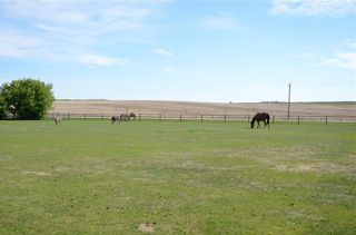 Photo 12: 280001 DICKSON STEVENSON Trail in Rural Rocky View County: Rural Rocky View MD Detached for sale : MLS®# A1064718