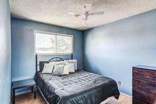 Photo 19: 2923 Doverville Crescent SE in Calgary: Dover Semi Detached for sale : MLS®# A1146625
