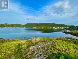 Photo 15: 0 Main Street in Moretons Harbour: Vacant Land for sale : MLS®# 1235758