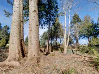 """Photo 31: 8089 REDROOFFS Road in Halfmoon Bay: Halfmn Bay Secret Cv Redroofs House for sale in """"WELCOME WOODS"""" (Sunshine Coast)  : MLS®# R2563771"""