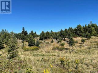 Photo 29: - Saint David Ridge in St. Stephen: Vacant Land for sale : MLS®# NB063465