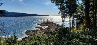 "Photo 36: 290 ESPLANADE Lane: Keats Island House for sale in ""Eastbourne Estates"" (Sunshine Coast)  : MLS®# R2554226"