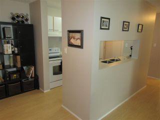 Photo 5: 105 6710 158 Avenue in Edmonton: Zone 28 Condo for sale : MLS®# E4236997