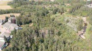 Photo 6: 40 BLACKBURN Drive W in Edmonton: Zone 55 House for sale : MLS®# E4266018