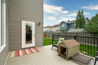 Photo 36: 730 CANOE Avenue SW: Airdrie Detached for sale : MLS®# C4303530