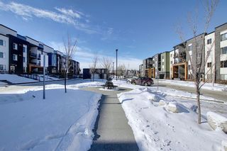 Photo 4: 1214 1317 27 Street SE in Calgary: Albert Park/Radisson Heights Apartment for sale : MLS®# A1070398