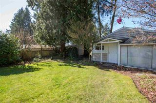 Photo 19: 3659 HENDERSON Avenue in North Vancouver: Lynn Valley House for sale : MLS®# R2447200