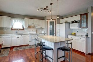 Photo 10: 325 CORAL SPRINGS Place NE in Calgary: Coral Springs Detached for sale : MLS®# A1066541