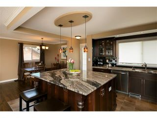 Photo 16: 236 PARKSIDE Green SE in Calgary: Parkland House for sale : MLS®# C4115190